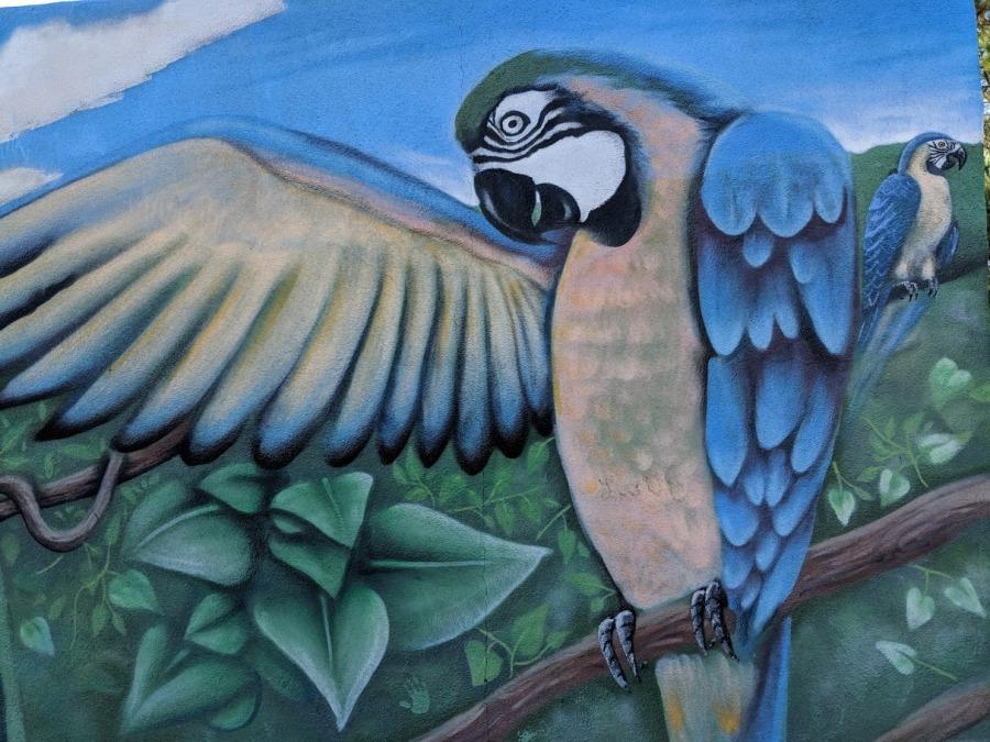 mural at zoo