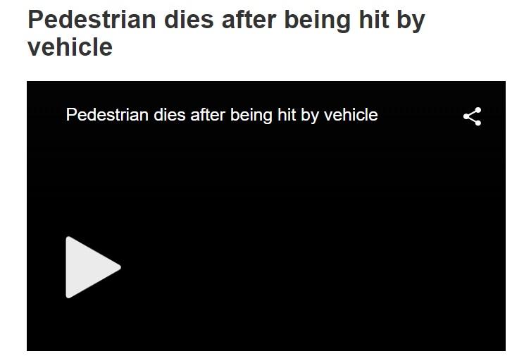 pedestrian dies