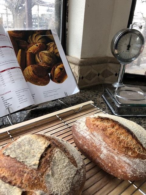 breadder 3.7.20 1