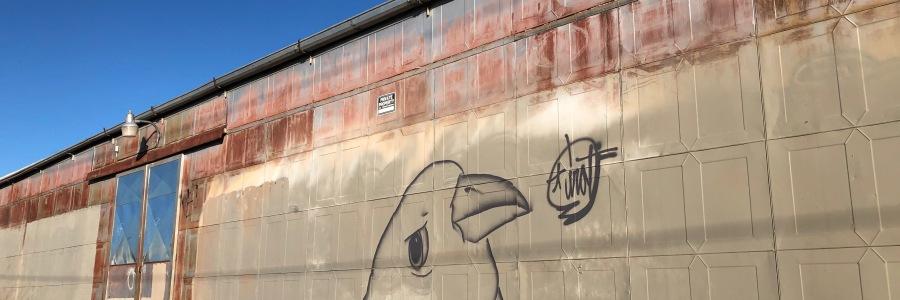 Albuquerque bird graffiti